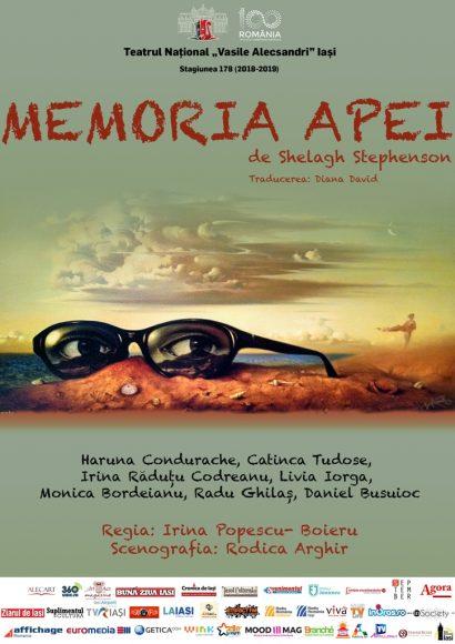 MEMORIA APEI -AFIS